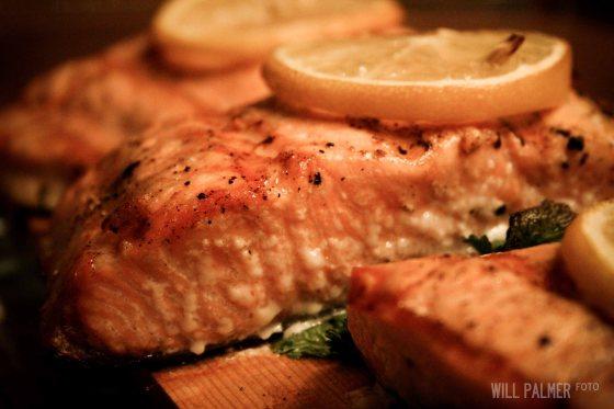 Salmon (5 of 7)