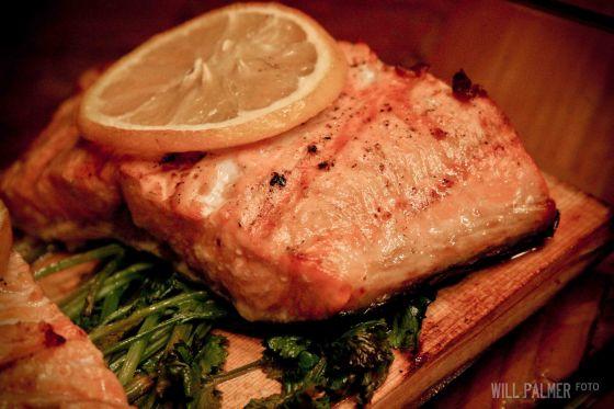 Salmon (6 of 7)