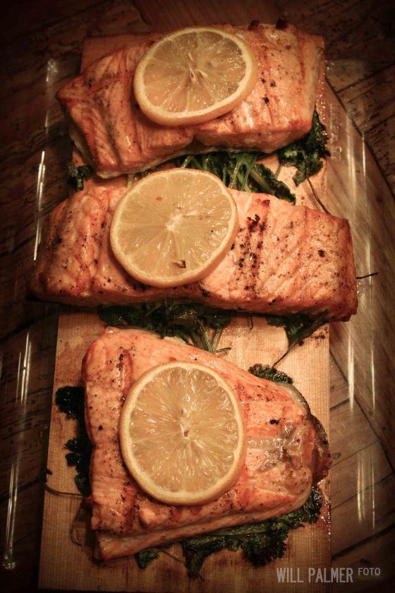 Salmon (7 of 7)