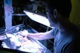 Newborn Mackenzie (13 of 15)