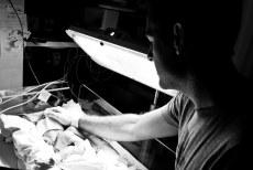Newborn Mackenzie (14 of 15)